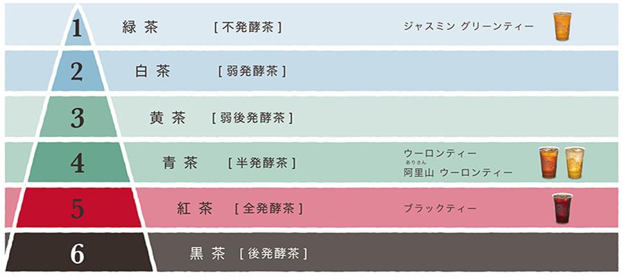 台湾茶の種類 発酵レベル